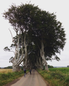 Okay, so I did do one touristy thing. Many of you may recognize this as the entrance to the Dark Hedges in Game of Thrones.
